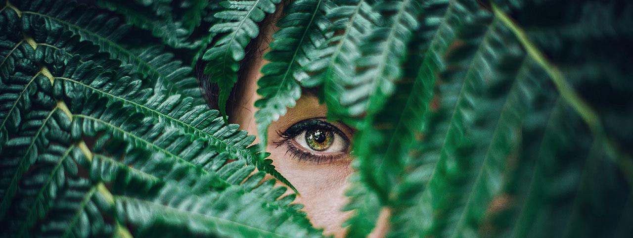dry eye treatment by Edmonton Alberta optometrist