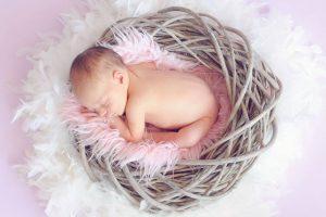 baby sleeping in nest