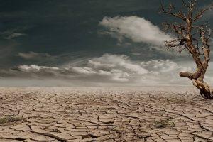 landscape desert