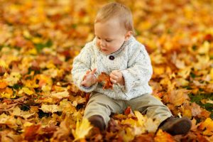 toddler autumn leaves in Bardstown, KY