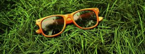 orange sunglasses in grass
