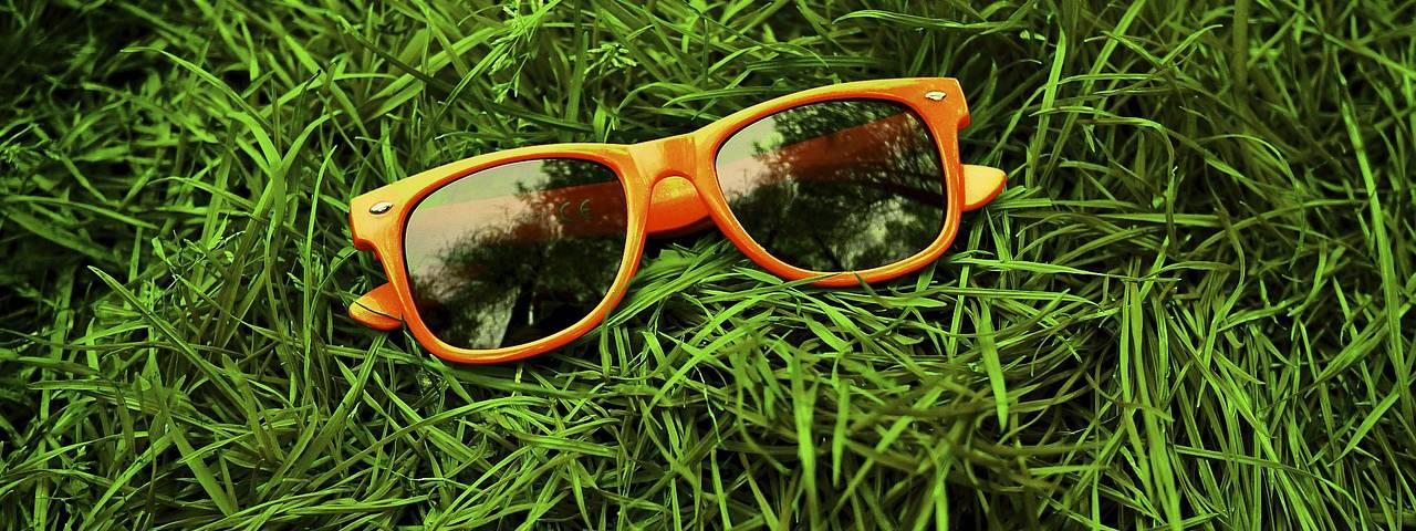 Orange Sunglasses in Grass 1280x480