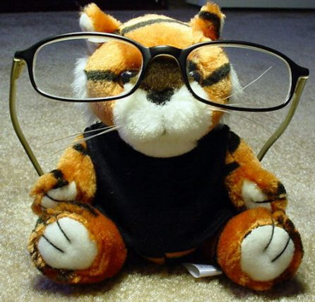 toy%20wearing%20glasses-446x427