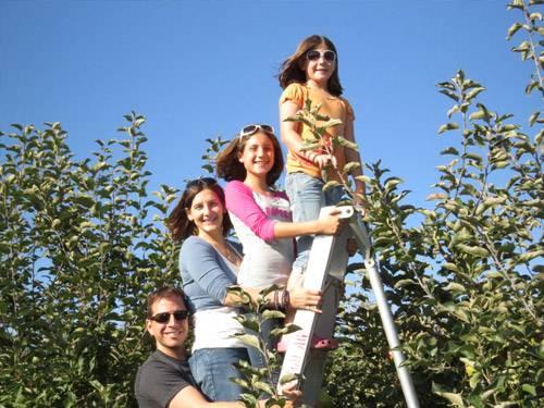 family ladder