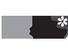 Zowee Wow Logo