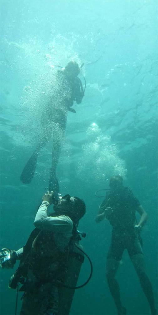scuba web