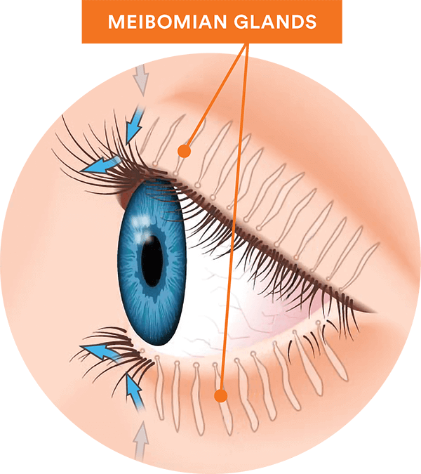 eye care, why are tears so important