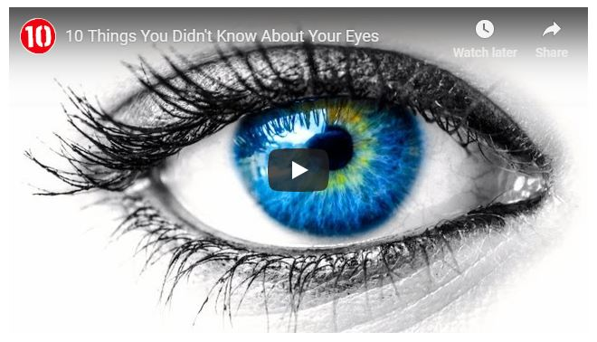 10 things you didn't know about your eyes video