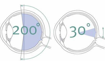 200degree