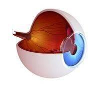 eye doctor boca raton