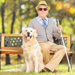 Eye doctor, senior man with low vision and his guide dog in Rockford, Illinois