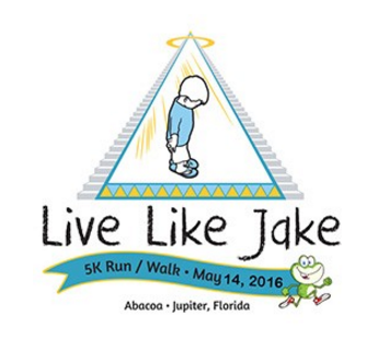 Capture livelikejake