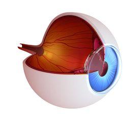 eye exam South Chesterfield County