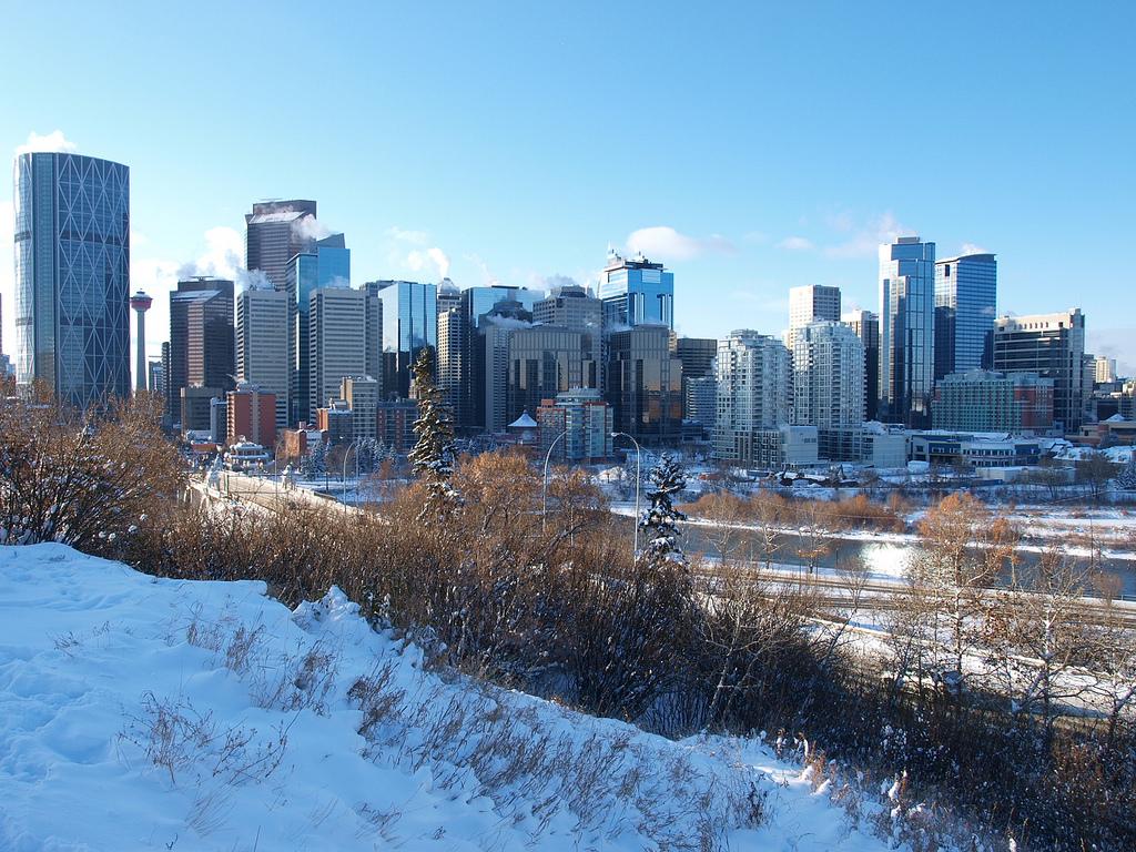 Calgary Alberta Downtown Winter Snow