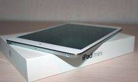 Mini_iPad_1_new