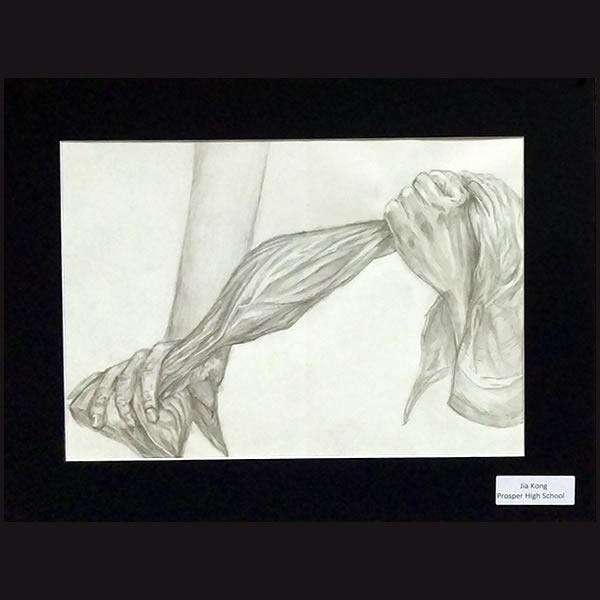 phs-drawing-9