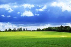 TSO Sugar Land, TX, Vision insurance