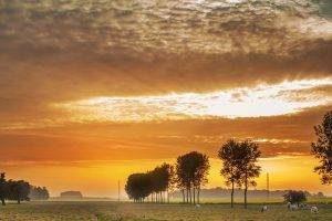 farmland background