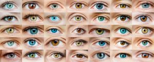 Colors of Eyes