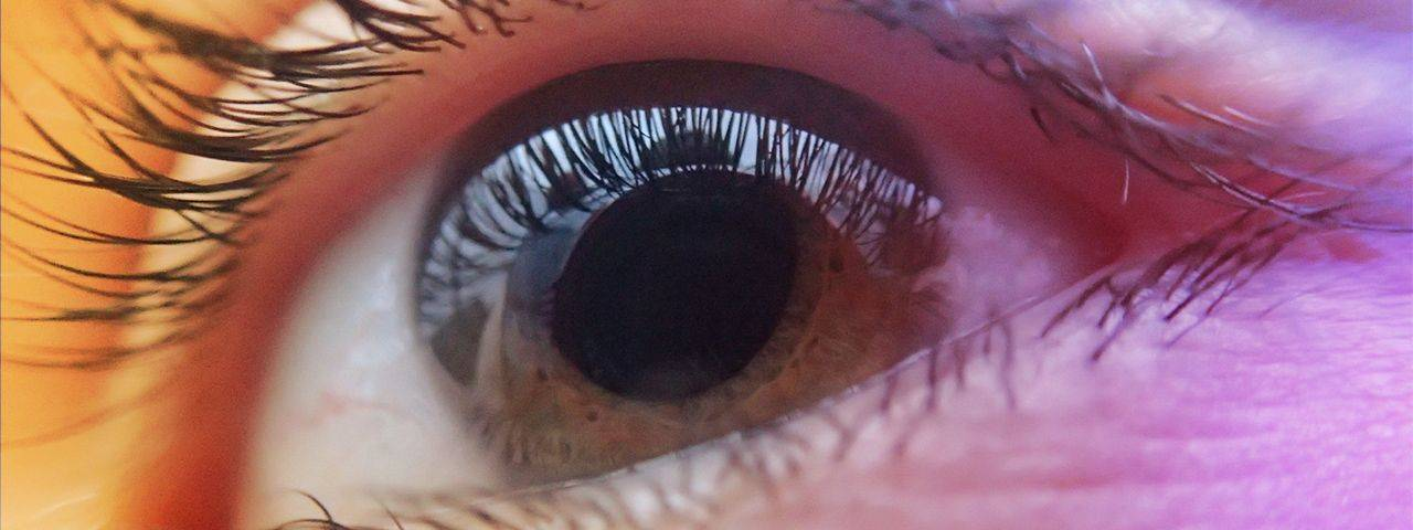 closeup hazel eye
