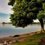 niagra on the lake