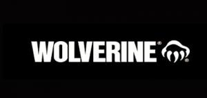 wolverine safety glasses logo
