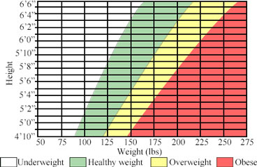 Bodyweight Graph