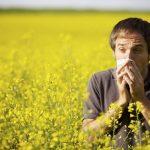 Eye Care, allergy rape seed field male sneeze in Roanoke, VA