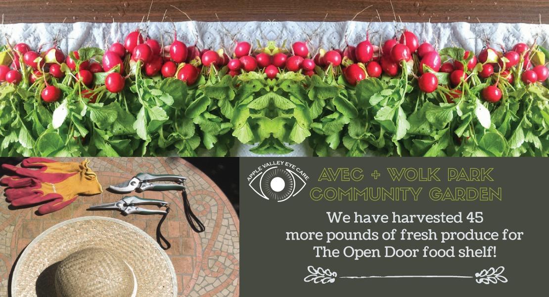 AVEC_The-Open-Door-_-2019-web-banners
