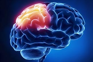 Visual Conditions Which Frequently Occur from Acquired Brain Injuries Thumbnail 1.jpg