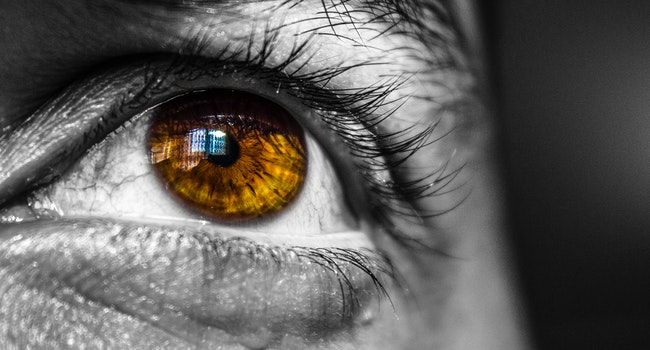 black-and-white-close-up-eye-18809