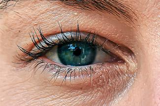 Eye Doctor Livonia, MI