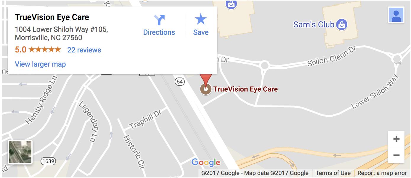 Large google map of TrueVision