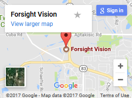 forsight vision map