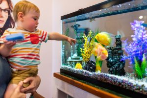 Eye Exams in West Siloam Springs | Boy pointing at fish
