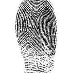 fingerprint 1382652 640