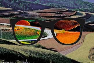 Enchroma Lens
