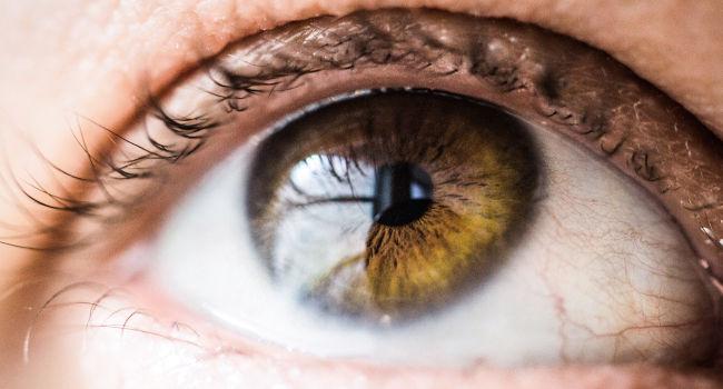 bumbeers-yellow-cornea-San-Leandro-CA