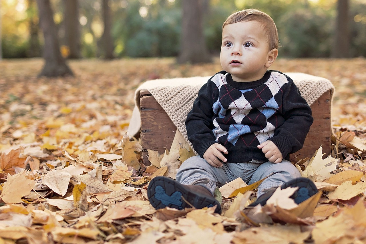 Baby in Autumn Leaves 1280x853