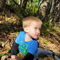 tree planting boy
