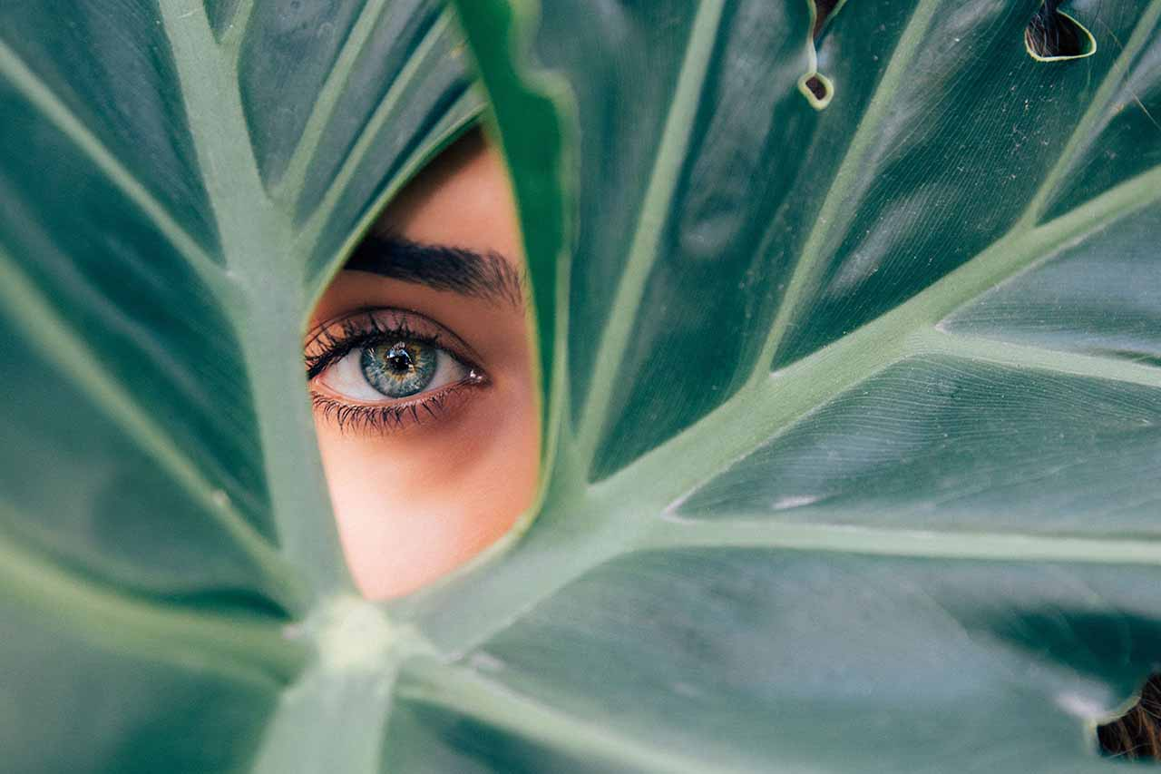 Close up of dry eye, peaking out from leaves