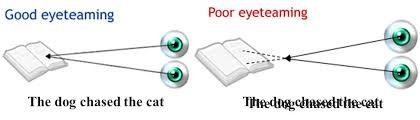 Binocularity graphic