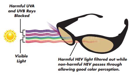 HEV-sunglasses.png