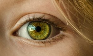child-eye-eyelid-32267pexelsnoattributionneeded-300x180