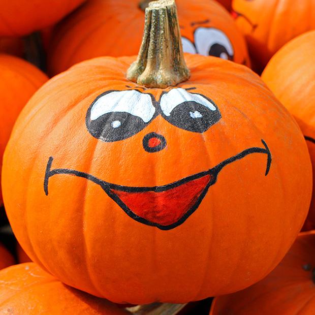 Pumpkin Good For Eyes 620