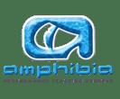 amphibia-color