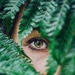 Eye behind green leaves - Brighton, CO
