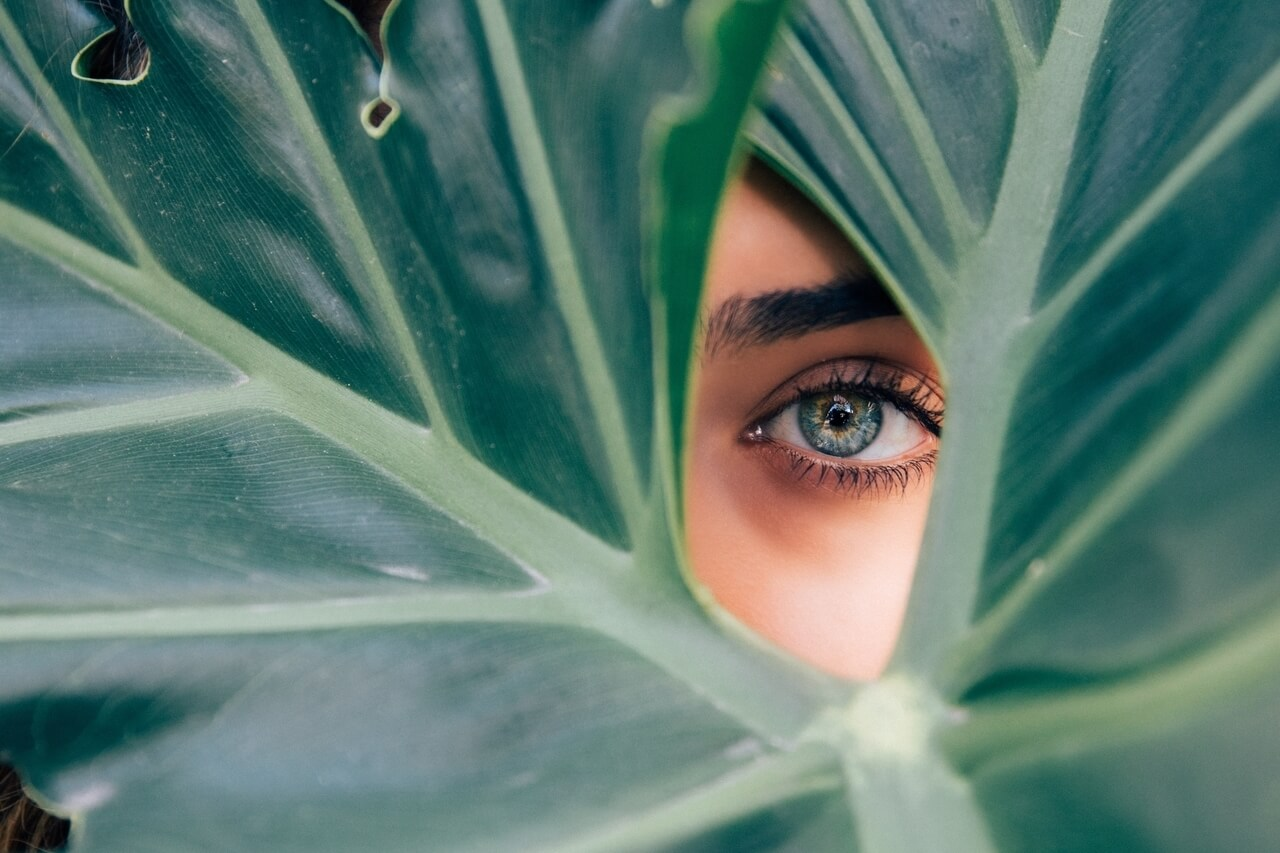eye woman leaf 1280x853
