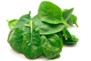 spinach web