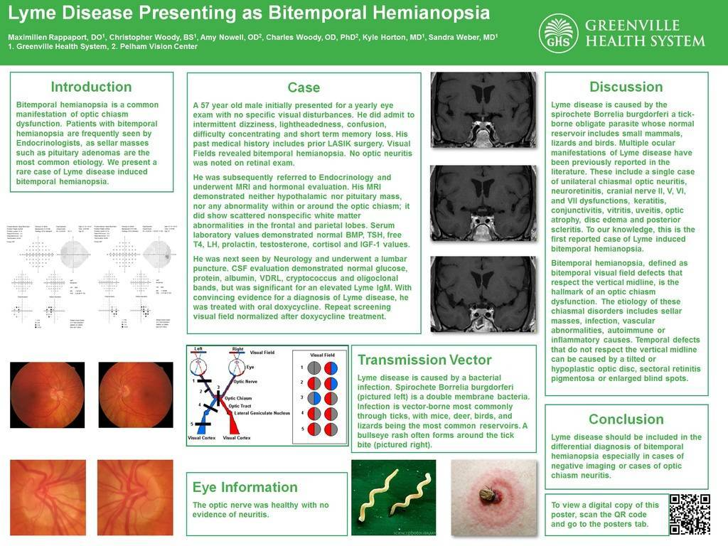 Lyme poster 2015 pic